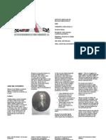 Leyes del Movimiento o de Newton.doc