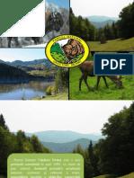 Parcul Natural Vânători - Neamţ