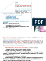 Spondiloza Cdl Studenţi Mg 2010presentation1 [Autosaved]