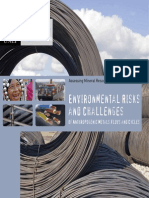 Environmental risks and challenges of anthropogenic metals flows and cycles - Summary