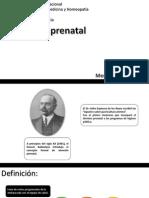 Atención Prenatal (Incompleta)