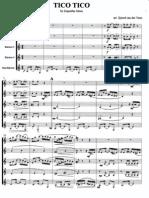 TicoTico Score