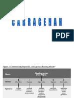 Carragenan pectinas 2013.ppt