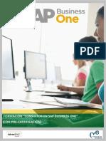 Programa Consultor SAP CVE1