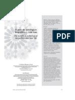BIRMAN, J. ; Marques Seixas, Cristiane . O Peso Do Patológico - Biopolítica e Vida Nua