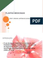 oficinadefitoterapia-101206200023-phpapp01