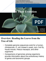 21 Lecture Genome and Evolution