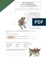 2.2 Teste Diagnóstico - Portugal Nos Séculos XV e XVI (1)