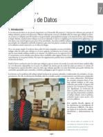 Capitulo 7.pdf