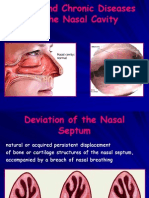 Acute and Chronical Deseases of the Nose Cavity