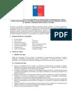Bases_Tecnico Profesional Sistema Calificación Energética de Viviendas - CEV.