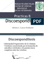 Disco e Spondilosis