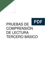 PRUEBAS+DE+COMPRENSIÓN+DE+LECTURA+3º+BÁSICO