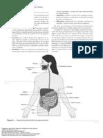 Anatom a y Fisiolog a Del Cuerpo Humano 217 to 245