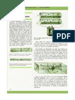 Ficha - Electricidad y Magnetismo - (20)