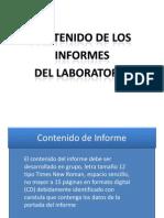 Descripcion Del Contenido Del Informe