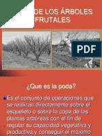 5º clase poda de los frutales 2014.pdf
