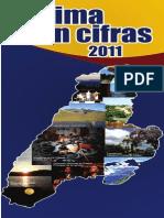 Tolima en Cifras 2011