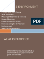 Business Environment - Copy