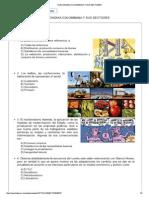La Economia Colombiana y Sus Sectores