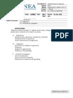 UNEA 1 Parcial Capacitacion y Desarrollo Lae 6