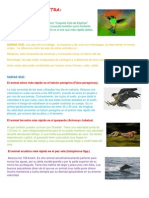 Datos sobre animales.docx