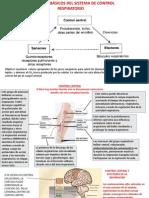 Clase Teorica Fisiologia Del Sist Respiratorio II. Varela 2014