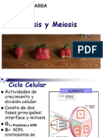 Mitosis y Meiosis Carlitosss....