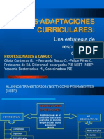 Adapt Ac i Ones Curricular Es