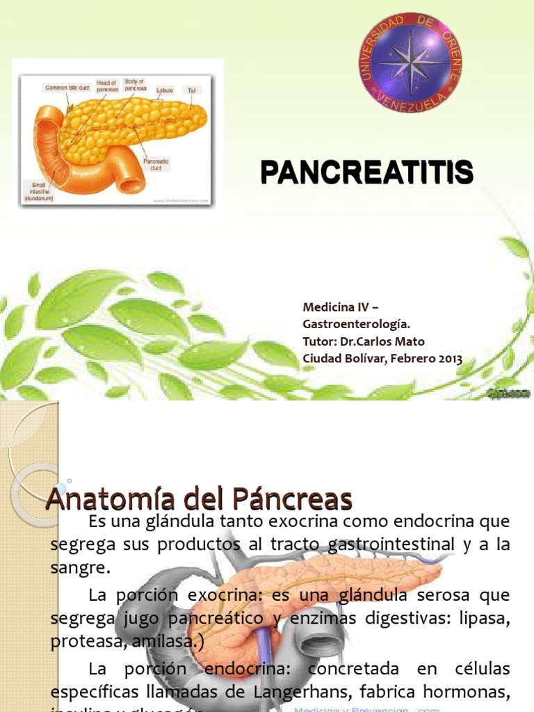 Pancreatitis 20132