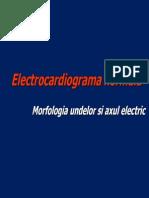 Cursuri ECG