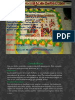Carbohidratos Presentación