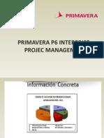 Primavera p6 Interprise Projec Managemet
