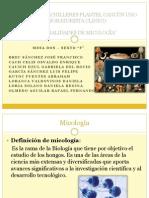 Diapos micología