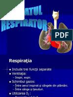 Curs Sem 2 - 10 - Respirator