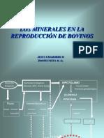 Minerales en La Reproduccion