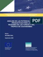 Informe Mision J.raux - Analisis Potencial - Vs.final