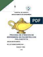 paepielonefritis-130624225000-phpapp02