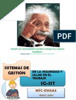 Ohsas 180001 y Profundización en Riesgos 2014
