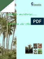 cartilla500preguntassobrepalmadeaceite1-091122101248-phpapp02