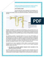 Cómo se produce la reabsorción tubular del bicarbonato - copia.docx