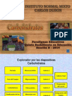 Paradigmas Educativos Carbohidratos