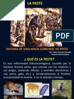 Vigilancia Comunal de La PESTE-Pego