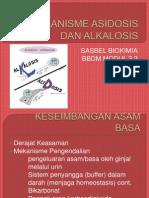 Mekanisme Asidosis Dan Alkalosis