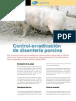 Control-erradicación de Disentería Porcina