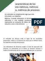 2.2. Características de Los Indicadores Métricos, Métricos Financieros, Métricos de Procesos