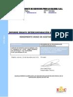 Informe Global GSCRGA-2013