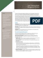 Ariba Working Capital Management