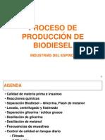 Proceso de Producción de Biodiesel
