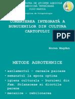 Combaterea integrata a buruienilor din cultura cartofului